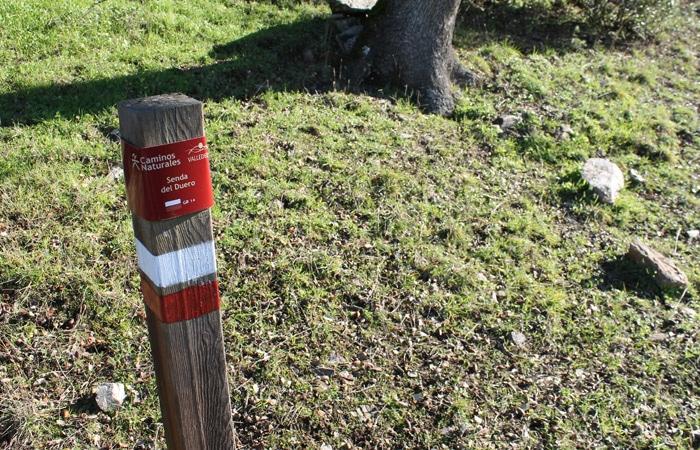 Marca de la Etapa 31 de la Senda del Duero de Pinilla de Fermoselle a Fermoselle