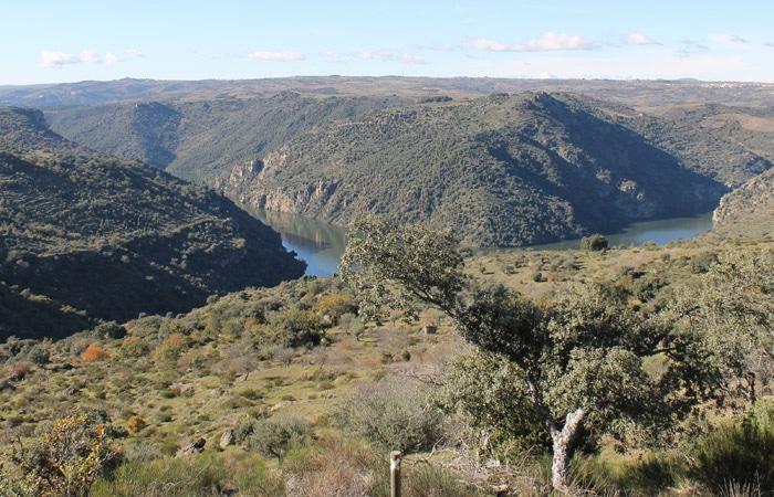 Vista del Duero desde los miradores de Fermoselle