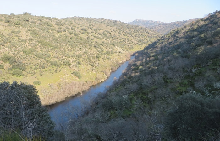 Vista del río Tormes antes de su desembocadura Ambasaguas