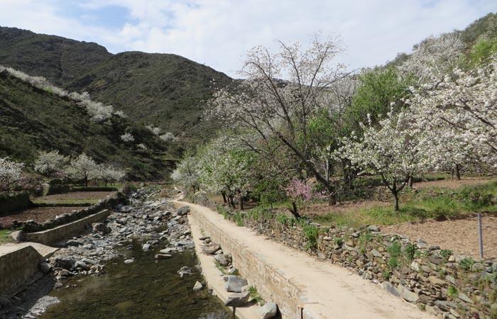 Puente río Hurdano Huetre senderismo en Las Hurdes