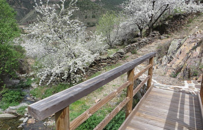Puente sobre el arroyo de Fuente Fría senderismo en Las Hurdes