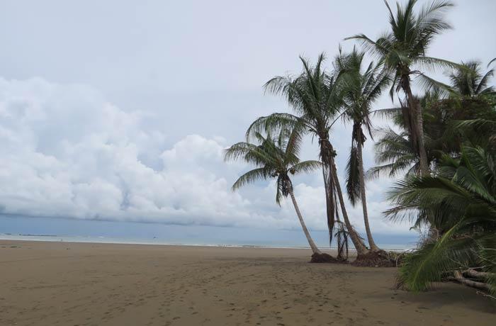 Playa del Parque Nacional de Marino Ballena Costa Rica por libre