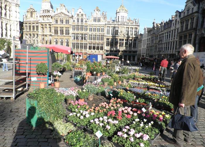 Mercado de flores en la Grand Place de Bruselas plazas más bonitas de Europa