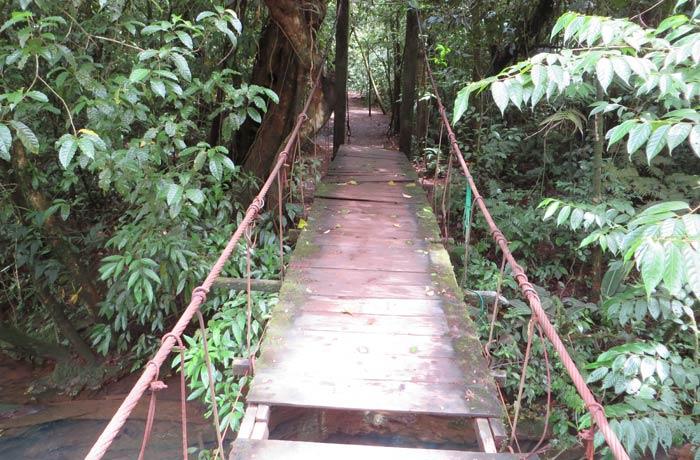 Puente Misterio del Tenorio que hay que atravesar rumbo a los teñideros Río Celeste