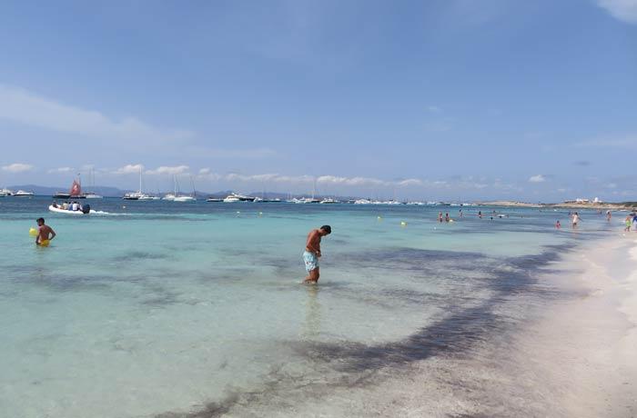 Agua limpia con algo de posidonia en Es Cavall d'en Borrás Playas de Formentera