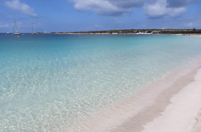 Playa de S'Alga en la isla de Espalmador Playas de Formentera