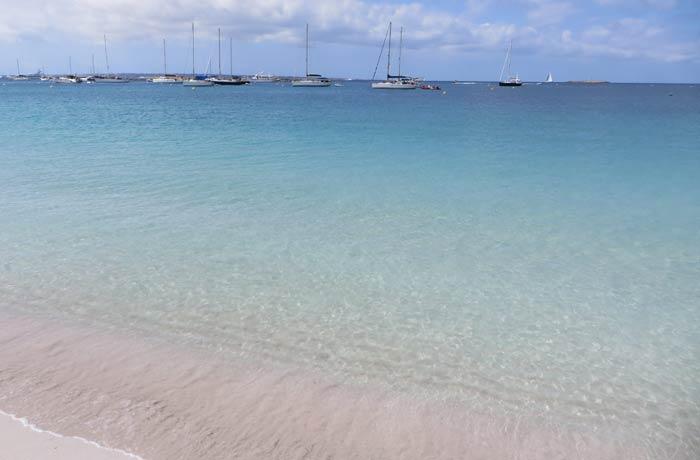 Aguas transparentes en la playa de S'Alga en la isla de Espalmador Playas de Formentera