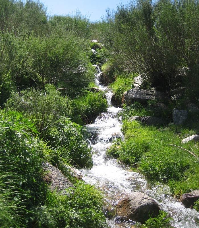Arroyo afluente el río Zezere Sierra de la Estrella