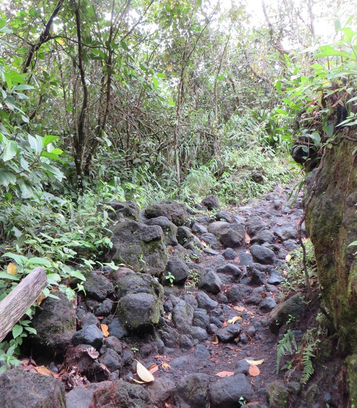Último tramo del sendero de las Coladas donde hay que caminar por la lava Volcán Arenal