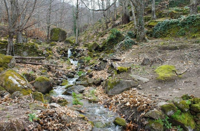 Arroyo Jubajerra en la parte más bella del recorrido senderismo en el Jerte