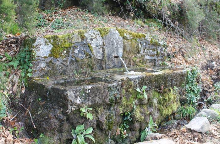 Una de las fuentes que se puede ver en la ruta entre Navaconcejo y Piornal senderismo en el Jerte