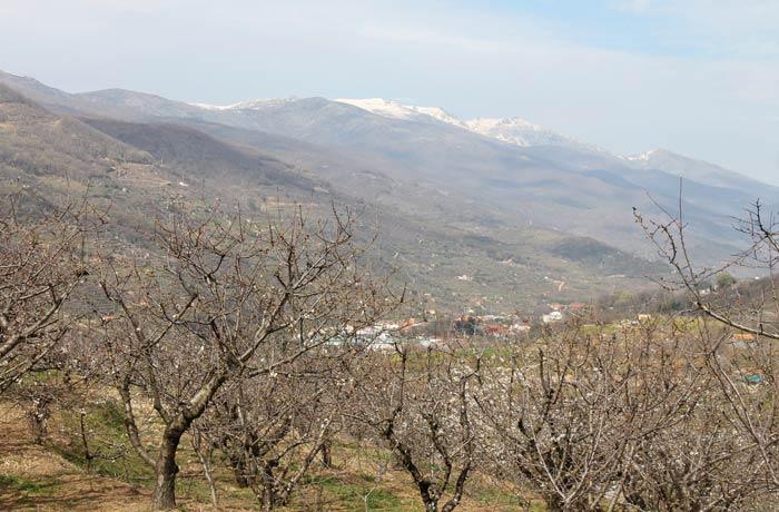 Vista del Valle del Jerte y de las cumbres de las sierras de Béjar y Candelario senderismo en el Jerte