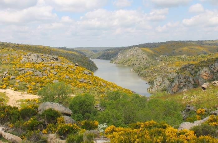 Vista del río Duero desde el camino que lleva a la peña de La Campana Cascada de Abelón