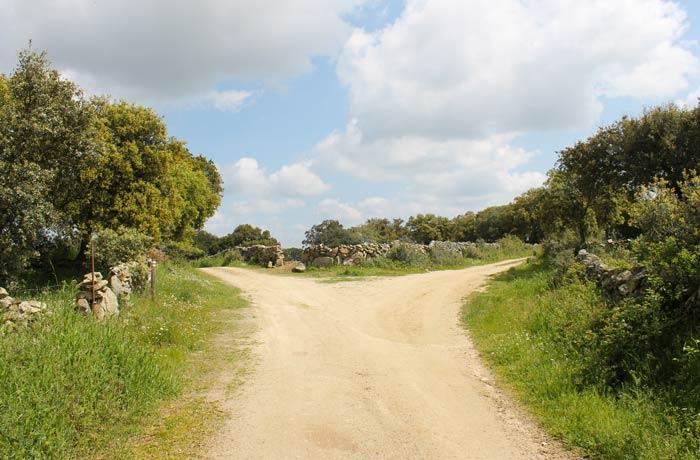 Segunda bifurcación donde se toma el camino de la izquierda Cascada de Abelón