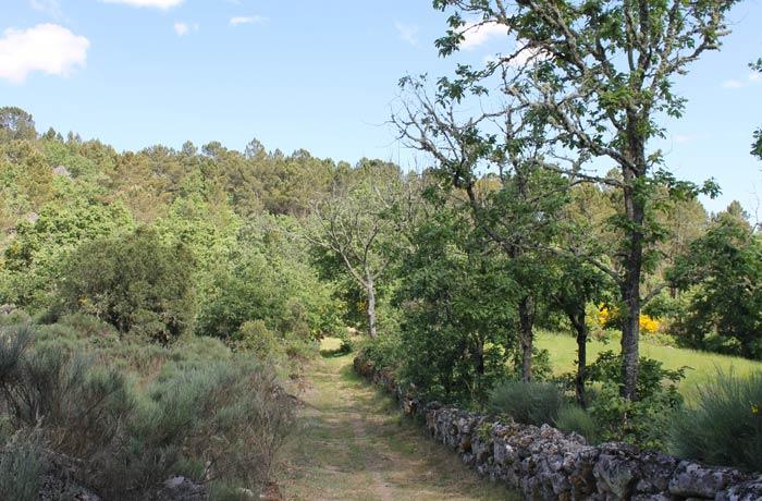 Vista del sendero de los Meandros del río Coa ruta en Sabugal